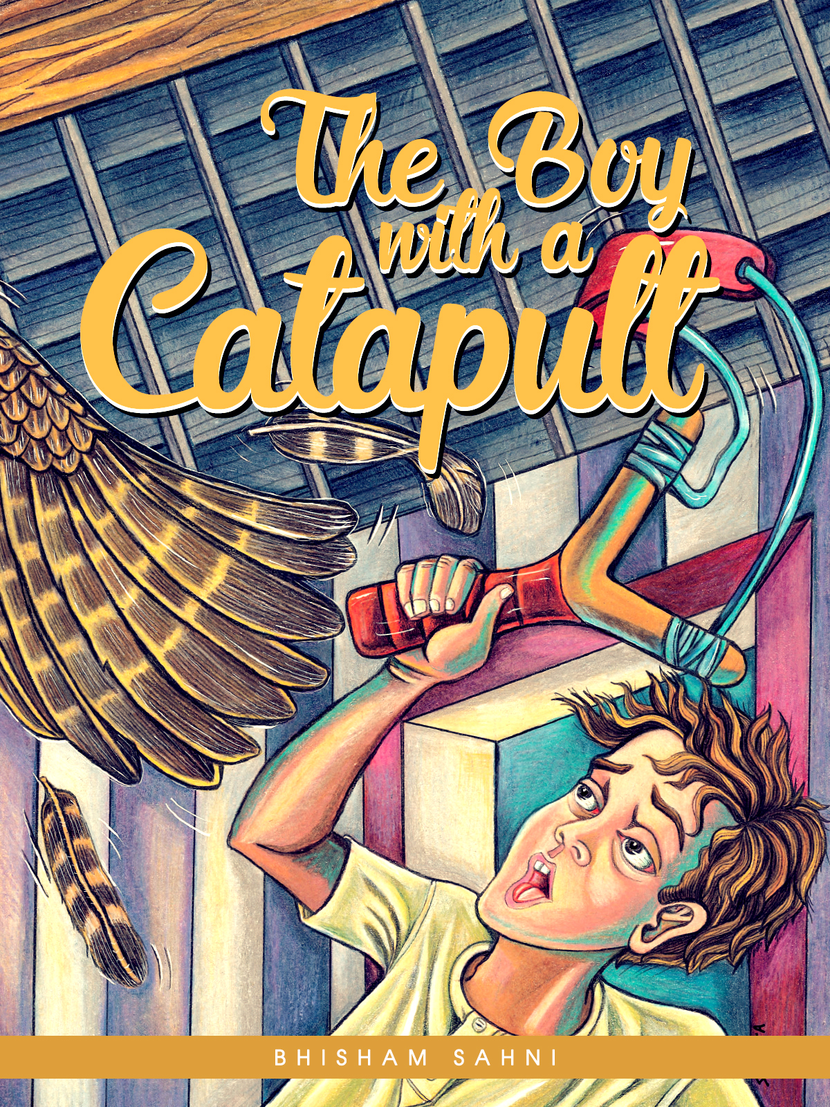 The Boy with a Catapult